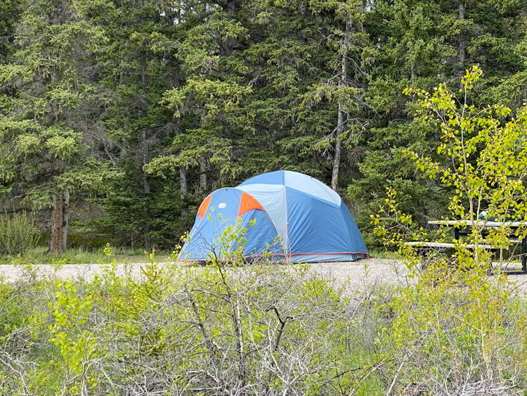 An image of a camp site at Two O'Clock Creek in Kootenay Plains ecological reserve near Abraham Lake in Alberta, Canada.