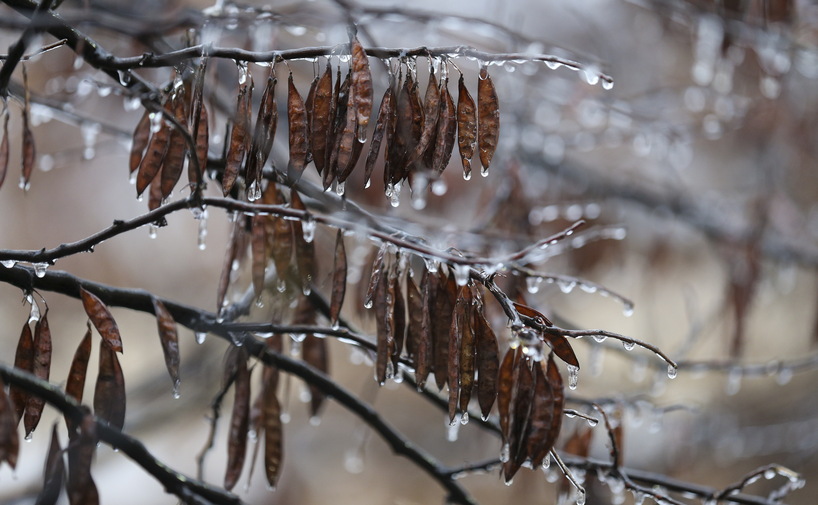 More Freezing Rain Temperatures Expected For Central Us