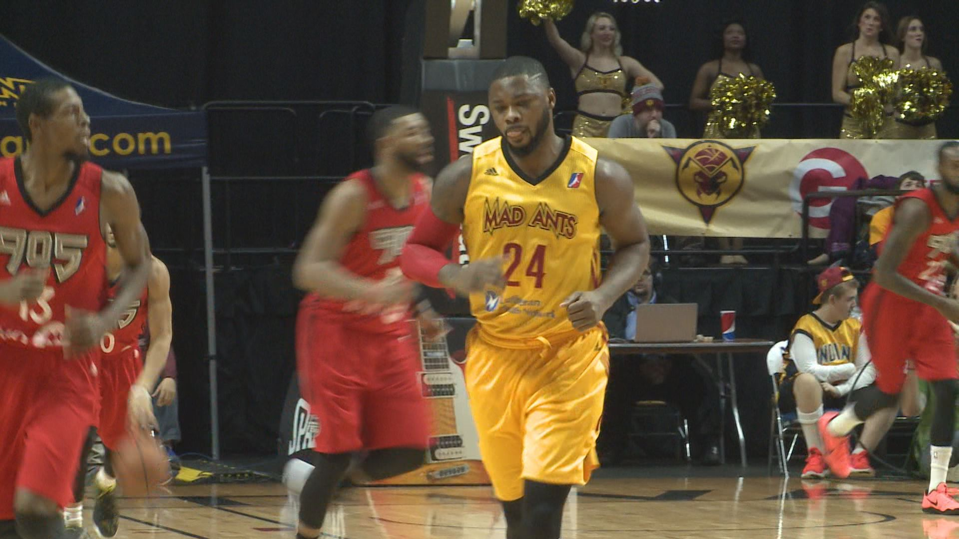 mad ants travis leslie_239385