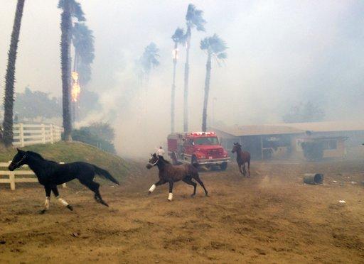 California Wildfires_300409