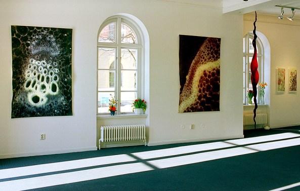 """Expansion-Rytm, fotografi på tovad ull från separatutställningen """"Organism"""" på Konstfrämjandet i Örebro år 2000. ©Maria Wangi Ibohm"""