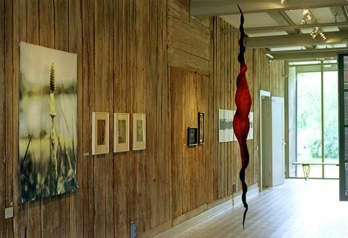 Från utställningen Flora Tinctoria Graphica, Grafikens Hus år 2000. ©Maria Wangi Ibohm, Maria Backström