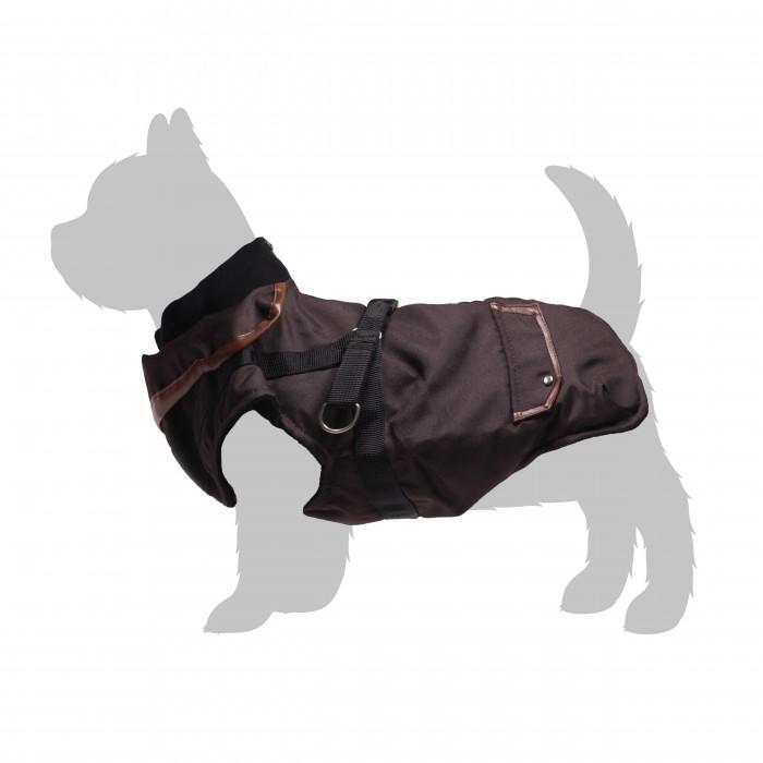 manteau pour chien pas cher en