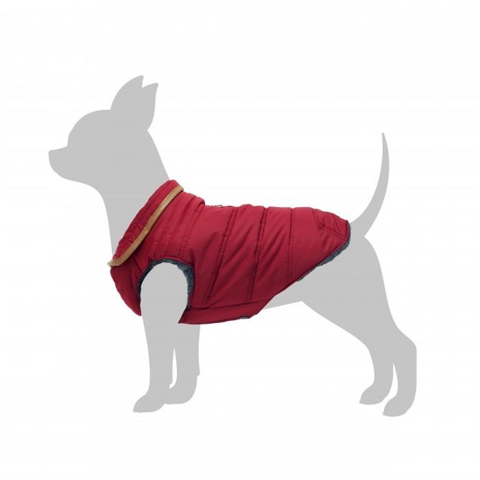 manteau chiens com