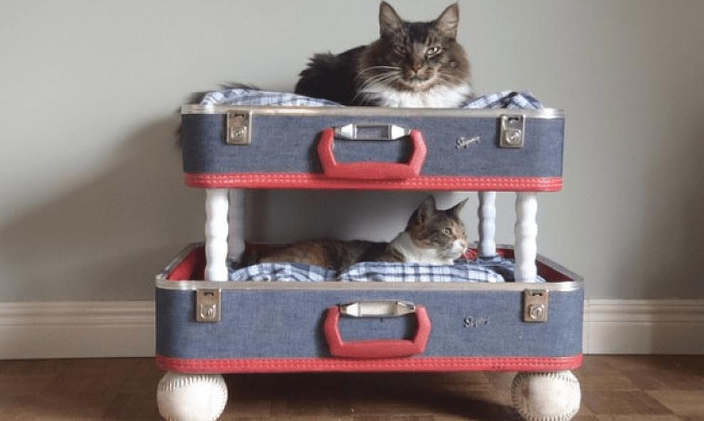 Recyclage de valise