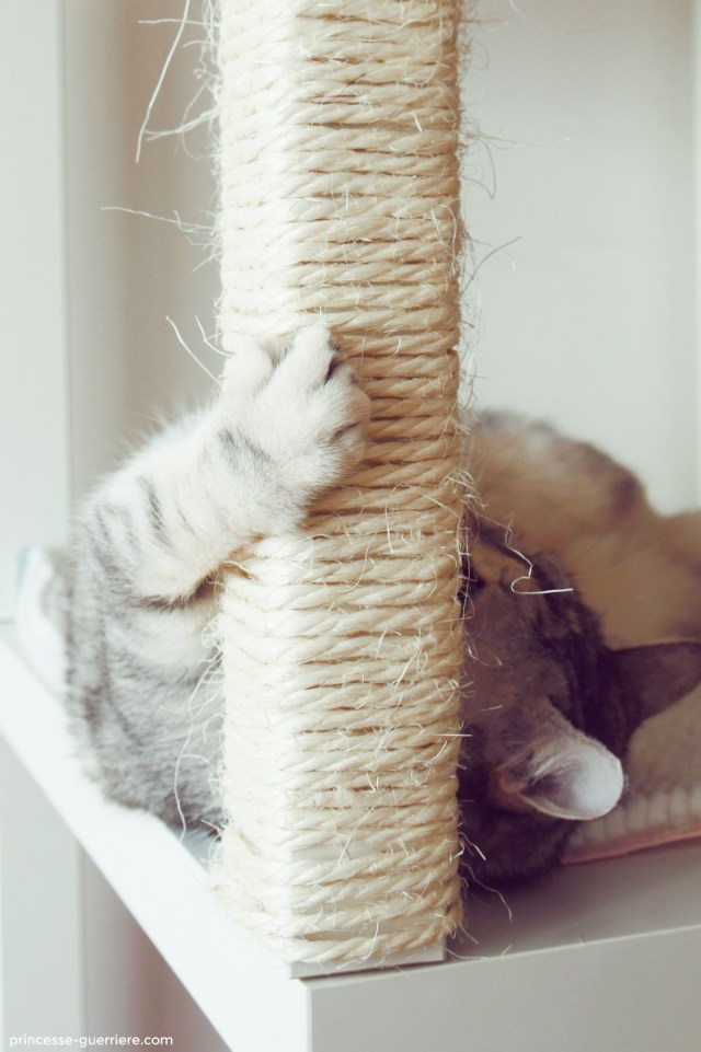 fabriquer son arbre à chat
