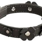 zwarte hondenhalsband klaverblad