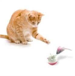Kattenspeeltje Hunt Swat Treat Tumbler
