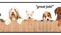 piddle place beschermwand voor je hondentoilet