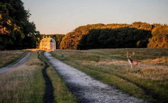 Jægersborg Dyrehave