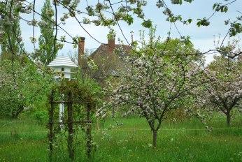 de boomgaard met de duiventil bij de South Cottage