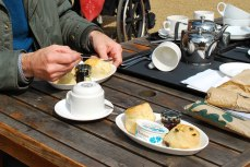tea, scones and clotted cream - yummie!