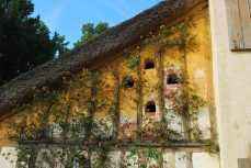 Versailles_hameaudelareine100