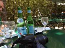 versailles_jardins