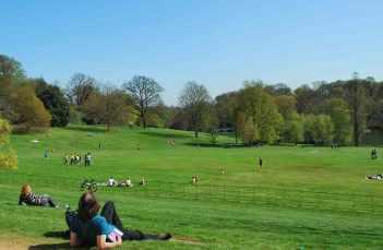 massa's groen in Hampstead Heath