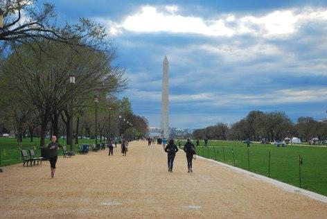 De National Mall (ook wel alleen The Mall) is de aanduiding voor een gebied tussen het Capitool en het Washington Monument in Washington D.C. met tuinen, fonteinen, bomen, bloemenperkjes en monumenten open voor publiek. Ook wordt over het algemeen het in het verlengde daarvan liggende stuk tussen het Washington Monument en het Lincoln Memorial tot de Mall gerekend, hoewel het officieel deel uitmaakt van de Constitution Gardens. De gebouwen die in de National Mall staan, zijn deel van het culturele en politieke centrum van de Verenigde Staten.