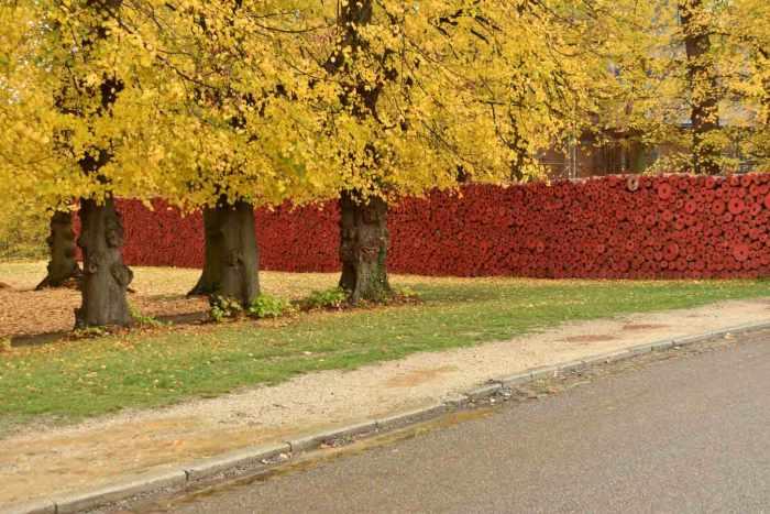 installatie Remembrance DAy Tervuren