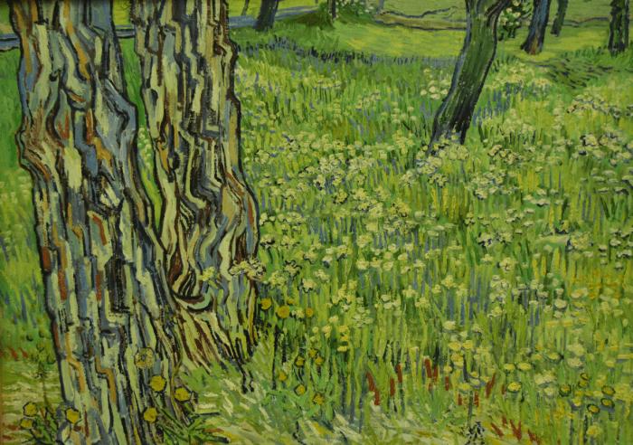 Van Gogh-boomstronken in het gras