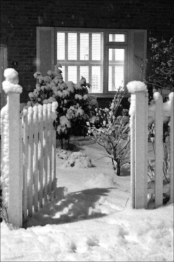 """© Geoff Wikinson who writes on his Wanstead Daily Photo blog: """"Thick snow, freezing cold, a long day but the light shining through the window and the open garden gate was a welcoming sight."""""""
