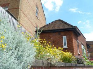 Snaresbrook Station wall garden