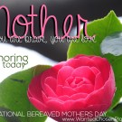 Mark your calendar: International Bereaved Mother's Day, May 4, 2014