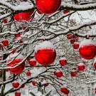 Grief on Christmas Day: 5 Ways to Cope