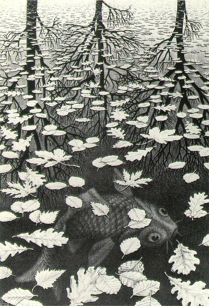 Hoe maak je iets dat onzichtbaar is, toch 'zichtbaar'.. Kijk naar deze prachtige ets van Maurits Escher waarin hij een tekening laat zien van.. Water..! Het zwemmen in, het drijven op en het weerspiegelen in.. Water.