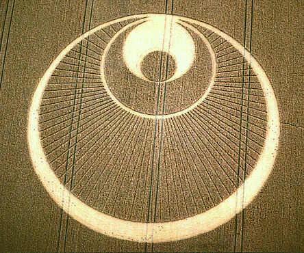 Graancirkel Cropcircle De Engel