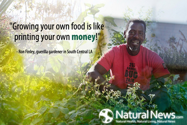 Quote-Growing-Food-Printing-Money-Ron-Finley-600