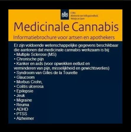 RIVM cannabis