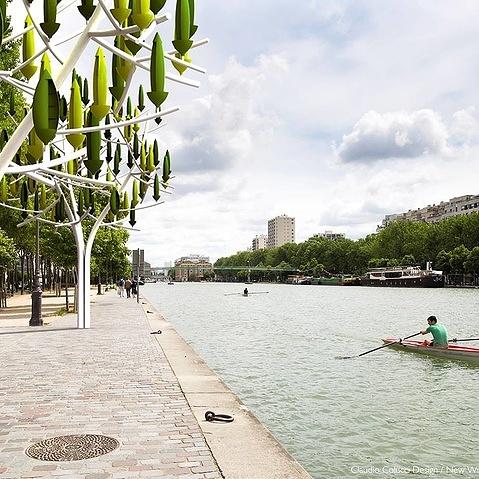 Windmolen boom -tree-urban