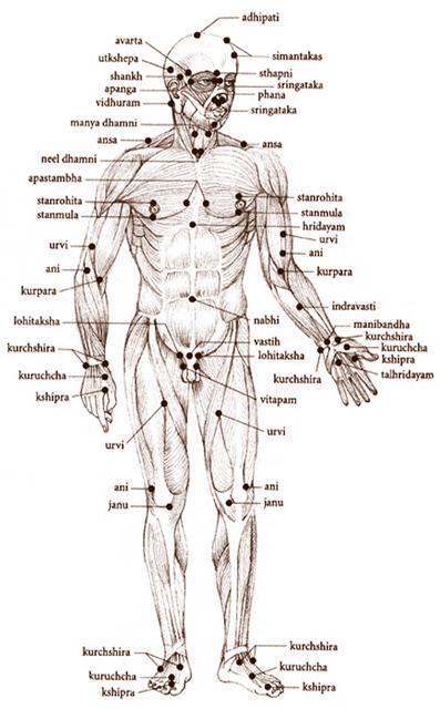 acupunctuur punten