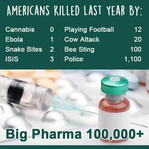 americans killed last year