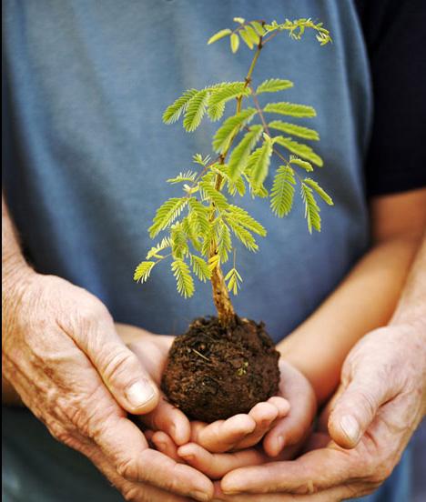 Groei is een fantastisch proces van Passie & Plezier!