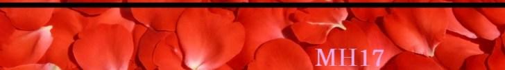 cropped-banner-MH17-II1.jpg