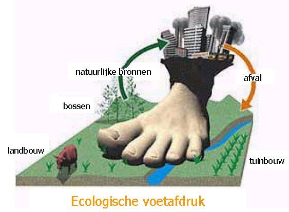 ecologischevoetafdruk