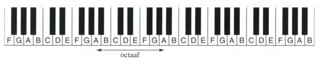 Het klavier met zijn zeven witte en vijf zwarte toetsen. Acht witte toetsen omvatten samen een octaaf.