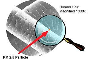 De grijze buis is een mensenhaar, uitvergroot tot het niveau dat het (roze!) fijnstofkorreltje zichtbaar is. Hier spreken we dus over.