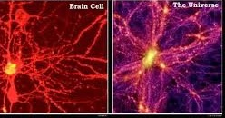 fractal hersencel universum