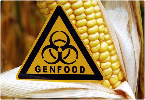 genfood