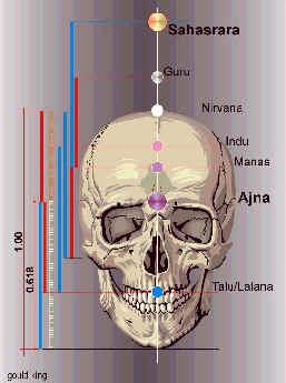 De hoofd-chakras aangeduid op de schedel