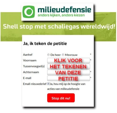 petitie shell