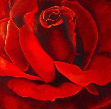 Ons hart is de deur naar Liefde, vaak symboliserend getoond als een zich openende roos.