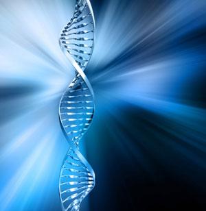 Over de wijze waarop ons DNA werkt als motor van al onze fysiek-menselijke frequenties is nauwelijks een voorstelling van te maken..
