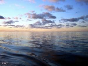 Het slootje en de oceaan