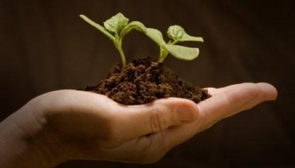 Uiteindelijk, zo blijkt maar weer eens uit wetenschappelijk onderzoek, is het beste voor de Aarde ook het beste voor ons..!