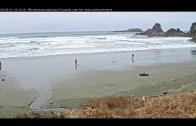 Pacific Sands Beachcam