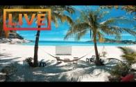 🔴 Beach Live Stream · Thailand / Koh Phangan / Haad Rin  · Full Moon Party (Seaview Sunrise Resort)