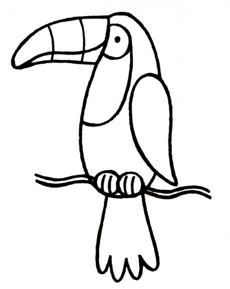 Toucan : Coloriage Toucan à imprimer et colorier