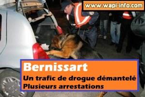Bernissart : trafic de drogue démantelé - 7kg de cannabis, 5 armes, une jaguar et 1.124 plants ont notamment été saisis